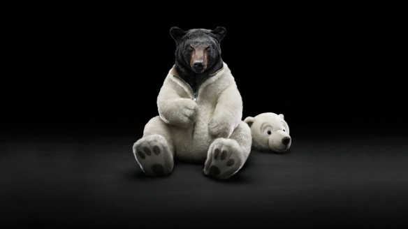 Costume-Animals-Funny-Bears-720x1280